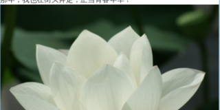 Screenshot of censored Weibo post